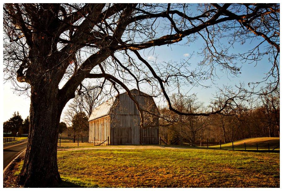 calvert county barns-16