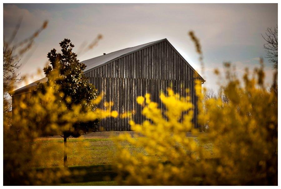 calvert county barns-26