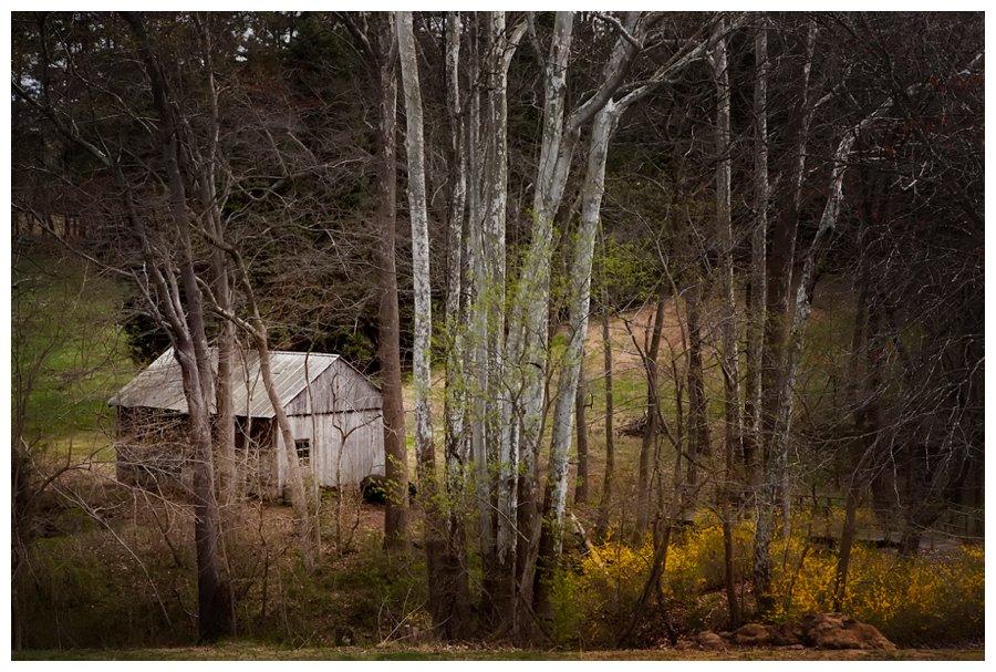 calvert county barns-32