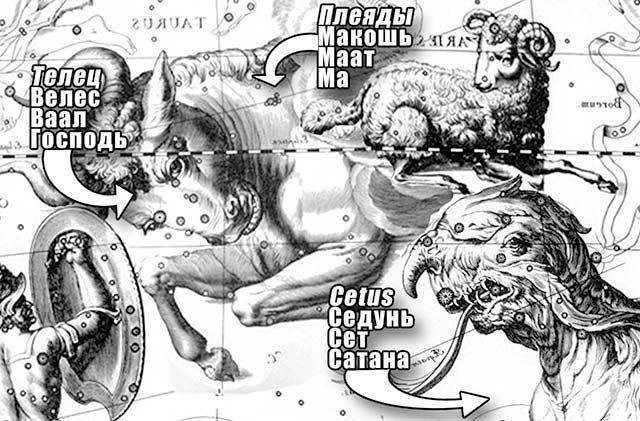 Taurus ryby datovaniaulzzang datovania Idol