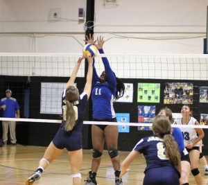 Lee tops Hawks in volleyball