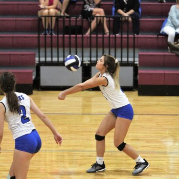 Hawks take volleyball win over Western