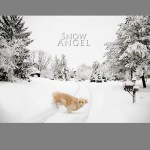 Dublin Ohio Winter by Robert Mullenix / Dunwanderin Digital Studio