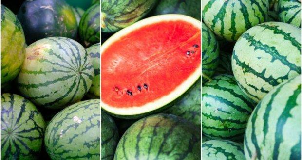water melon سرخ اور میٹھے تربوز کی پہچان سیکھیں