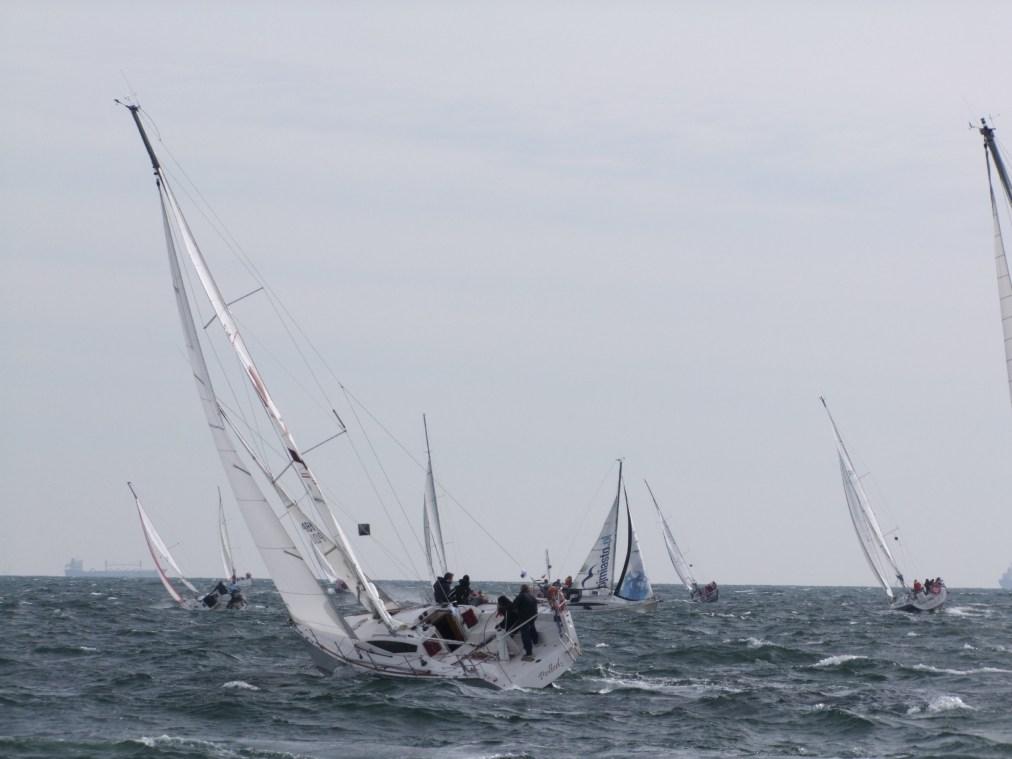 gdynia-regaty-blekitna-wstega-premium-yachting-32