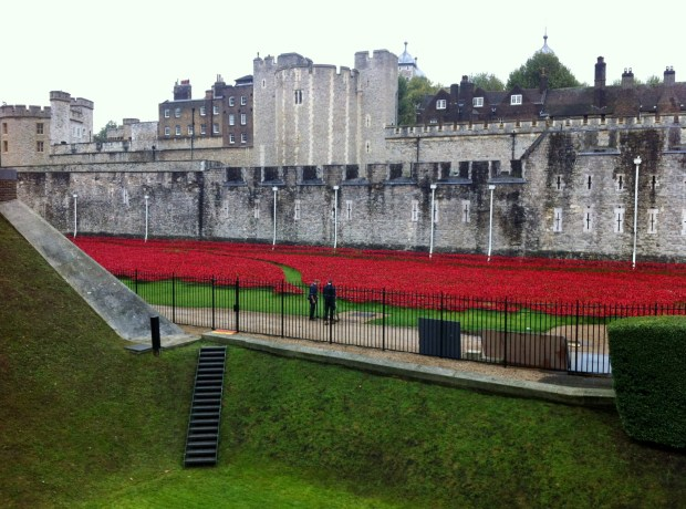 londyn-maki-tower-hill-towerpoppies-poppy-poppies-tower-of-london-fosa-zamku-ofiary-i-wojna-swiatowa-wielka-brytania