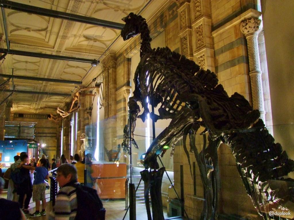londyn dinozaury muzeum historii naturalnej