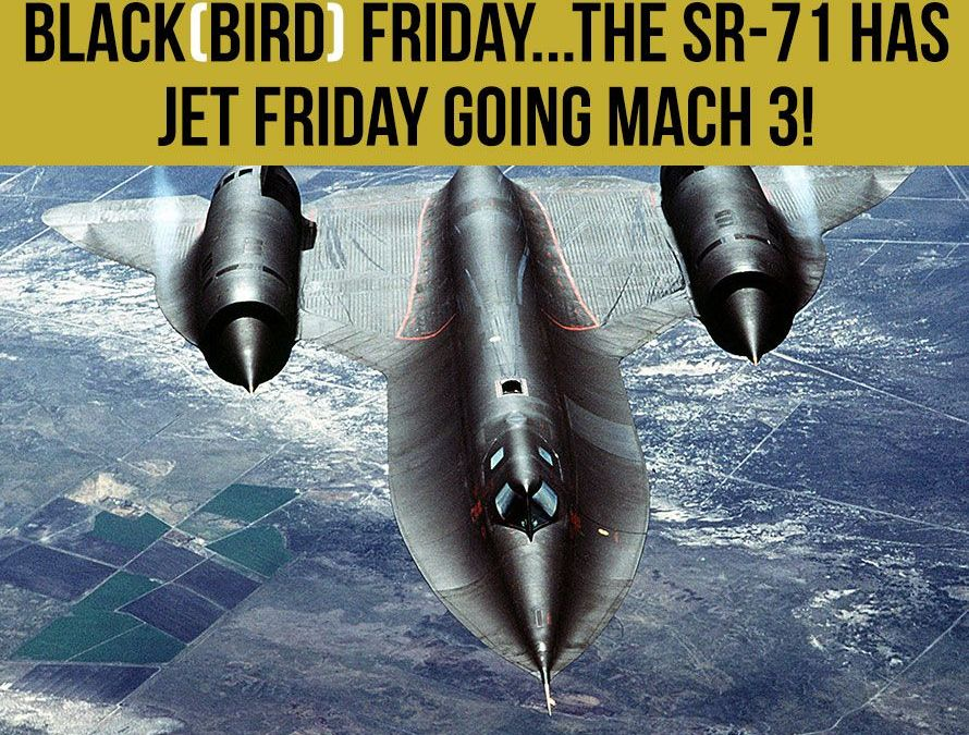 Blackbird Friday