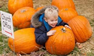 pumpkin patch1