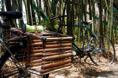 bamboo bike rack