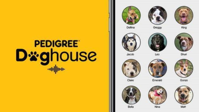pet food brand turns clubhouse into pedigree doghouse - Pet Food Brand Turns Clubhouse Into Pedigree Doghouse