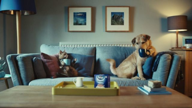 Tetley Wants More Young People to Drink Tea