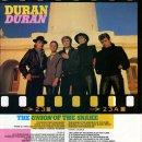 Union of the Snake lyrics (1983)