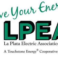 LPEA board elects John Witchel as district 4 director