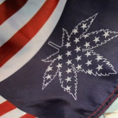 Where is weed legal? Map of U.S. marijuana laws by state
