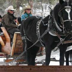 Old Fashioned Sleigh Rides, plus Santa!