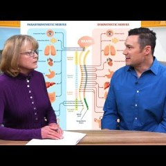 HEALTHY LIVING: What Does a Chiropractor Do?
