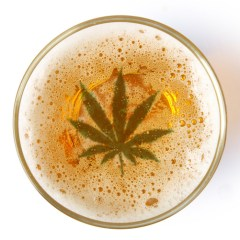 Weed beer is near, and it's gonna get weird