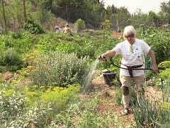 "Party Honors ""Mother"" of Community Gardening"