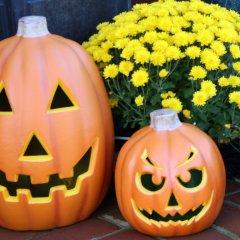 Halloween Happenings in the Next Week