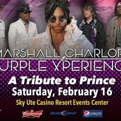 Purple XPerience – A Tribute to Prince