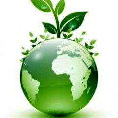 Tips to Go Green at Home