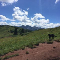 Spring Hiking in Durango