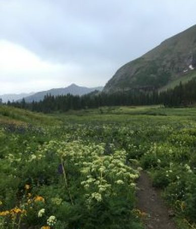 Hiking Trails in Durango, Co, hiking in Soutwest Colorado, San Juan National Forest