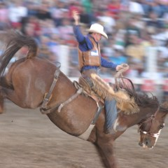 True West Rodeo—A Durango Summer Past-time