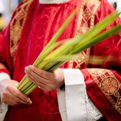 A Beautiful Idea for Palm Sunday