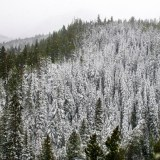 Colorado can expect a warm, dry winter ahead, NOAA report says
