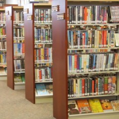Pine River Library more than book warehouse