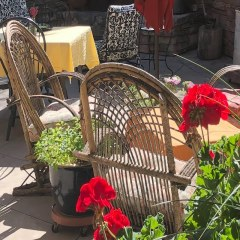 Learn a New Language, Vacation in Durango