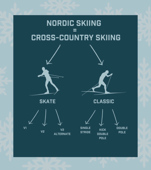 nordic skiing inforgaphic