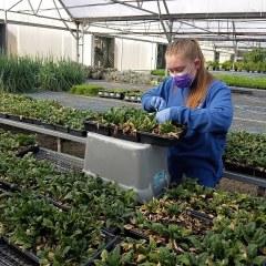Four Seasons Winter Farmers Market Brings Summer to Winter