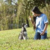 Dog Training With Or: How Can I Communicate Desired Behaviors To My Dog?