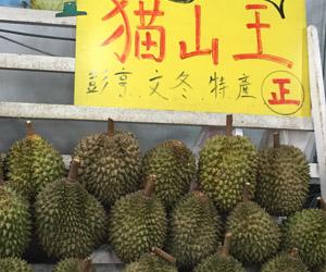 反而馬來西亞本地不容易食到最頂級的貓山王?在開玩笑嗎?