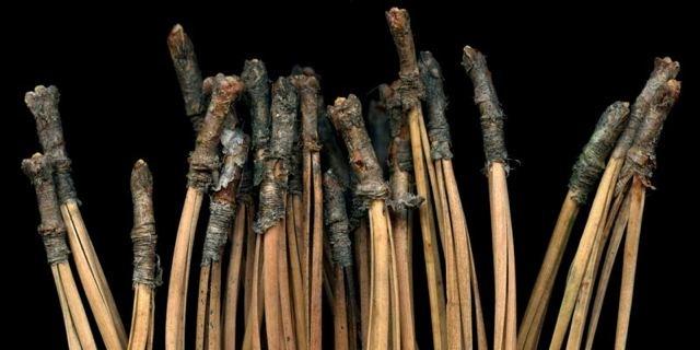 Pine Needles After Rodin