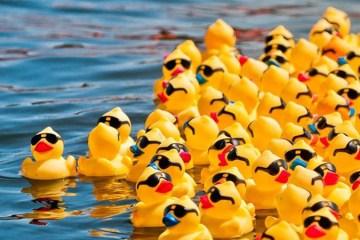Durrow Scarecrow Festival Duck Derby