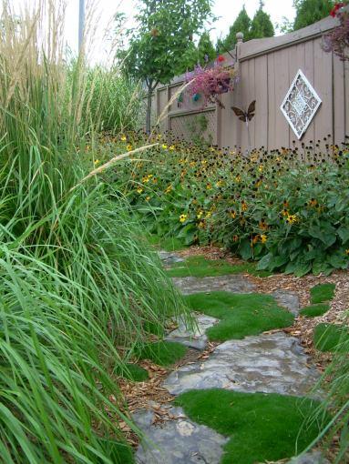 Landscape Garden 1