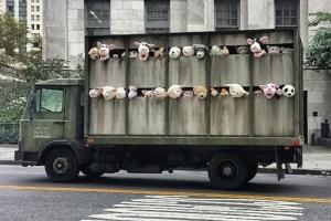 meat truck