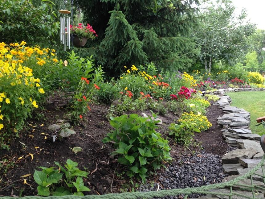 Garden - DustandDoghair.com