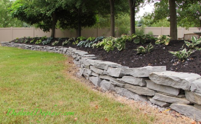 Hosta Garden with DIY stacked stone wall