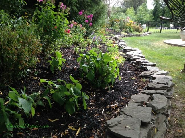 perennial garden1