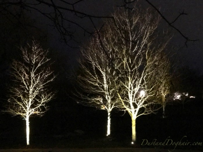 child friendly halloween lighting inmyinterior outdoor halloween decorations or the bark of leafless trees in winter true landscape lighting diy uplighting adding yearround lowcost magic to your yard and