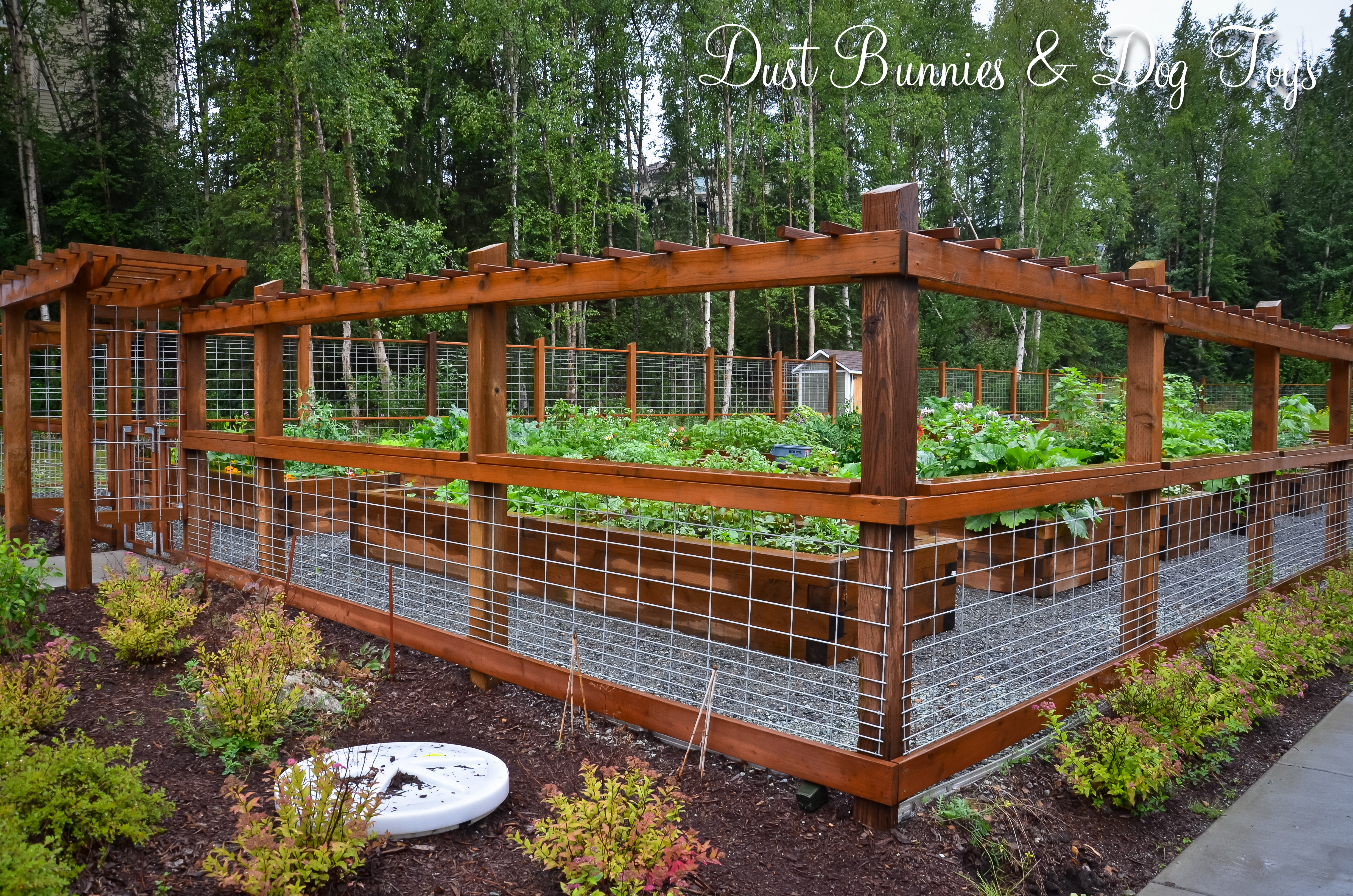 Wood and wire fence Back Yard Ideas Pinterest Wire