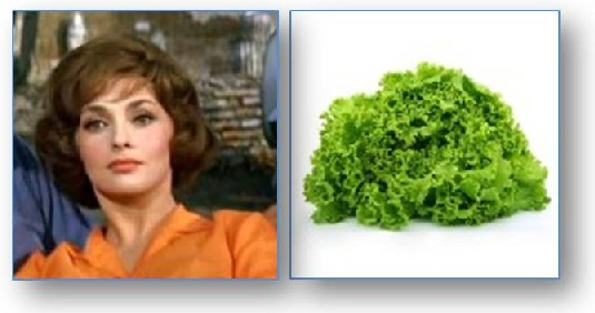 Gina Lollobrigida and lollo lettuce