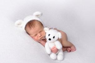 Polar Cub!