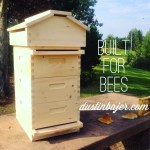 Apicentric beehive built for bees