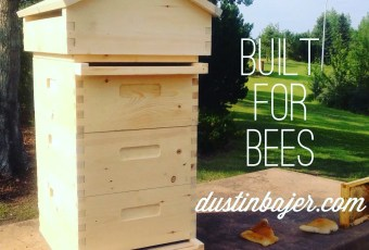 Beecentric beehive built for bees